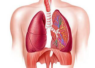 COPD, Vitamin D
