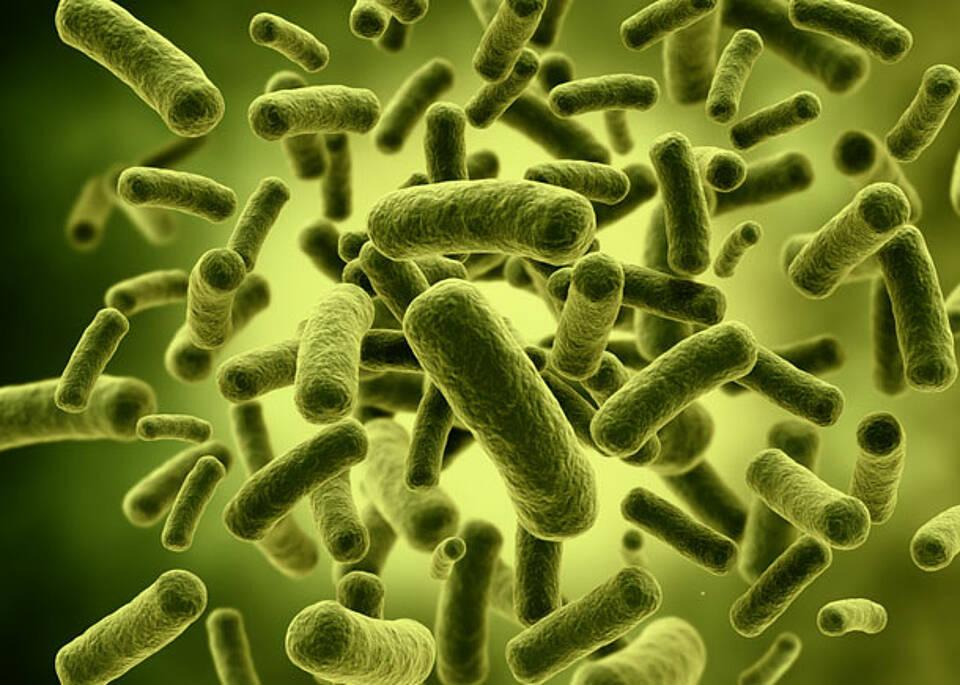 Krankenhausinfektionen – 800.000 Patienten im Jahr 2012
