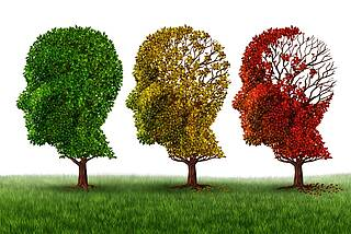 Drei Laubbäume (grünes, gelbes, braunes Laub) symbolisieren den Gedächtnisverlust im Alter.chen Köpfen.)