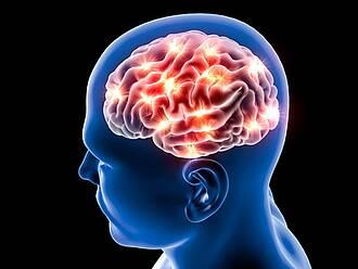 Stamzellen gegen Parkinson