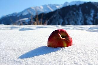 Roter Apfel im Schnee, im Hintergrund verschneite Berge.
