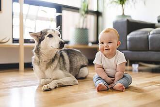 Hunde, Kinder, Asthma, Allergie, Asthma bronchiale