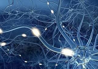 Dimethylfumarat wirksam bei MS