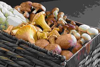 Korb mit verschiedenen Sorten Pilze.