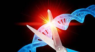 Genschere, crispr, genmanipulation, genforschungt