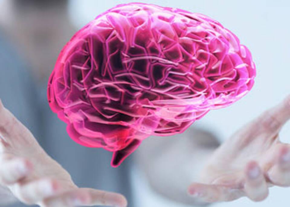 Alzheimer Früherkennung: Veränderungen an Grid Cells korrelieren mit Risiko-Gen