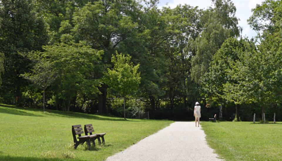 park, stadtpark, bäume, wiese, im grünen, spaziergang
