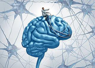 Neurowoche 2014: Doch keine neuen Nervenzellen fürs Gehirn