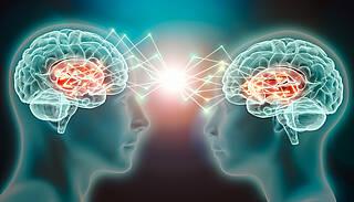 Empathie, Perspektivwechsel, soziale Kompetenzen, Netzwerke