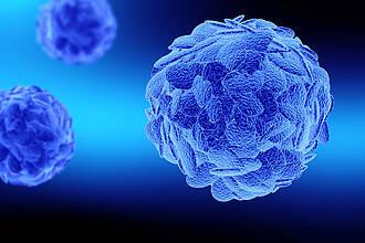 T-Zellen des Immunsystems im Modell (blau)