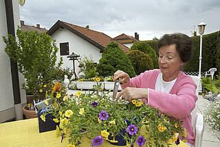 Outdoor-Aktivitäten, Gartenarbeit, Gärtnern