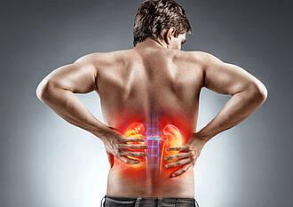 Nierenkrankheit, Nierenversagen, Weltnierentag