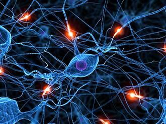 Am FMP in Berlin Buch startet ein neues Projekt zur Früherkennung der Parkinson'schen Krankheit mit stark magnetisiertem Xenon-Gas