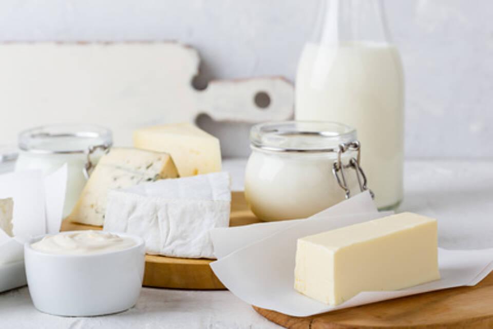 milch, joghurt, käse, butter, milchprodukte, molkerei-produkte m