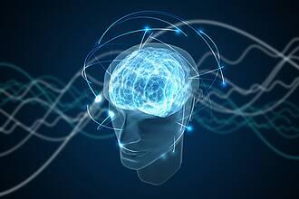 Plastizität des Gehirns, Brain-Computer-Interface, Nervenzellen