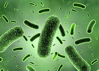 Neuer Übeltäter bei Colitis ulcerosa entdeckt