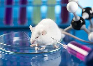 Wirkung von Methadon bei Gliobastom bislang nicht erwiesen