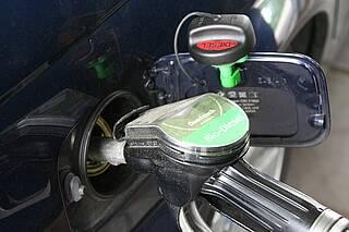 Der Diesel-Untersuchungsausschuss will keine tödlichen Gefahren von Diesel-Abgaben gefunden haben. Wissenschaftler halten das für absurd