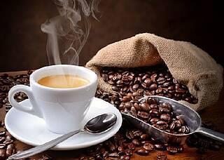 Koffein schützt Nervenzellen