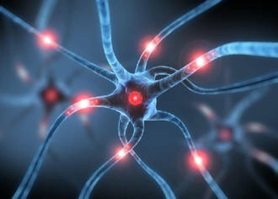 Multiple Sklerose, MS, Axone reparieren, Nervenverbindungen