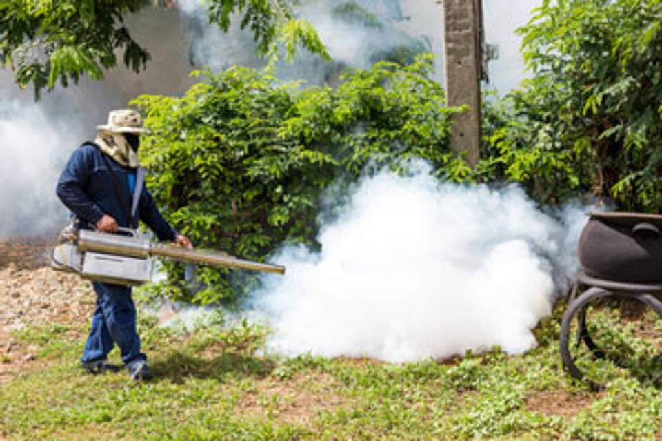 Brasilien kämpft gegen Stechmücken und das Zika-Virus: In Deutschland ist die Ansteckungsgefahr aber gering