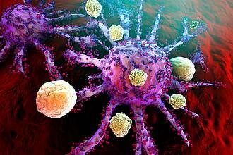 T-Zellen des Immunsystems attackieren eine Krebszelle.