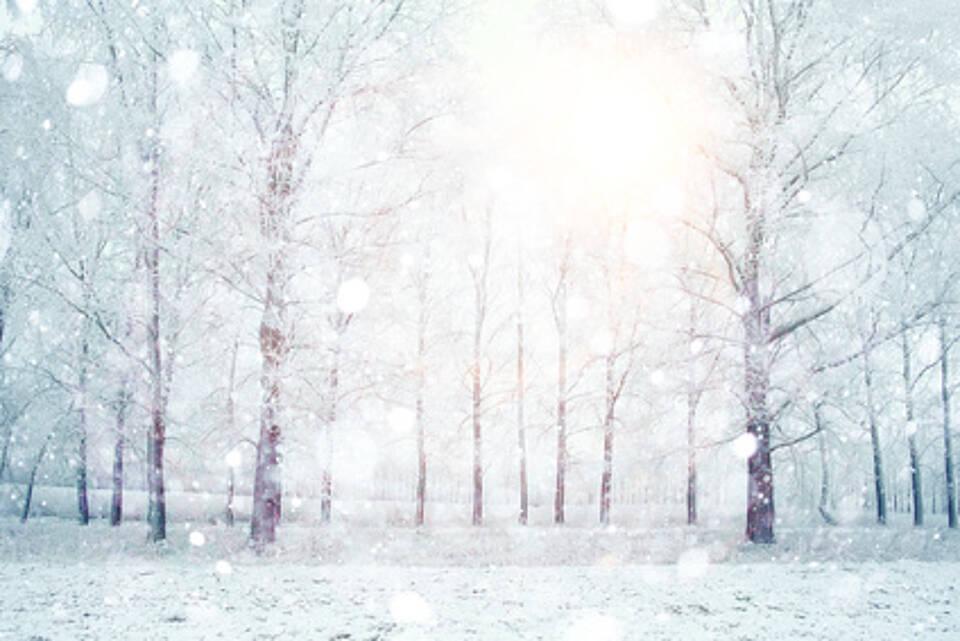 Lichttherapie hilft gegen Depressionen
