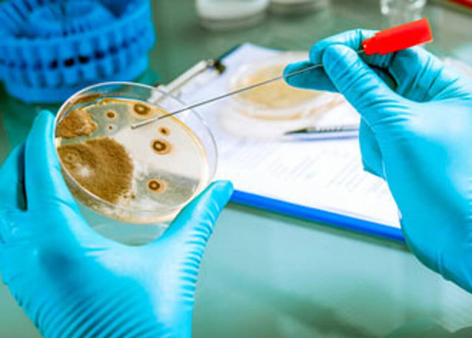 Ökonom O'Neill: Mehr Geld für neue Antibiotika dringend benötigt