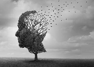 Candida albicans, Hefepilzinfektion, Gehirn, Gedächtnis, Demenz
