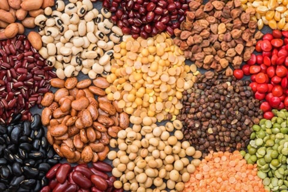 hülsenfrüchte, bohnen, linsen, kichererbsen
