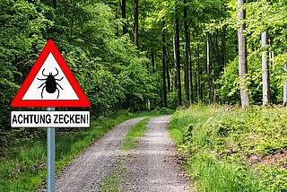 Zeckenwarnschild an einer Forststraße im Wald.