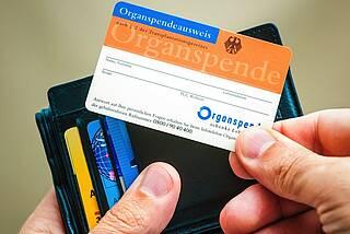 Erneut weniger Organspender
