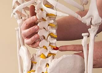 Implantat setzt Impulse im Rückenmark frei