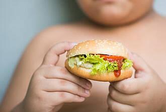 Junkfood mit schweren Folgen: Übergewicht breitet sich weltweit aus, besonders dramatisch in Lateinamerika