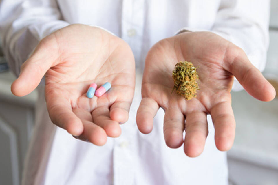 Cannabis als Medizin: Ein neues Gesetz regelt den Einsatz bei Schwerkranken