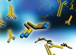 """Interferon-beta: Nützlicher """"Störfunk"""" in der Krebstherapie"""