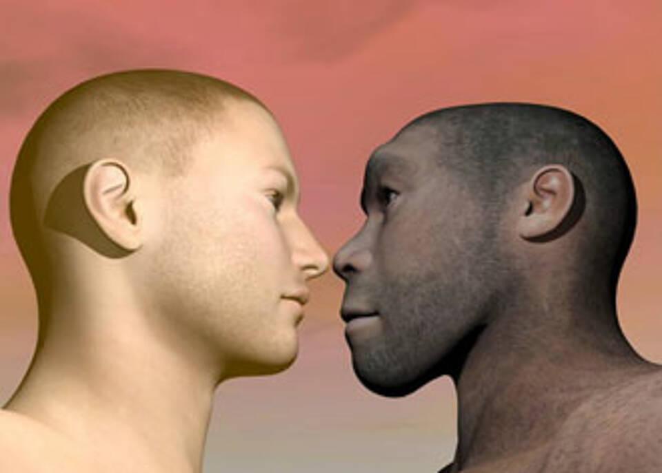 Der Neandertaler steckt in unserem Fettstoffwechsel