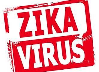 Zika-Virus kann zu Fehlbildungen führen