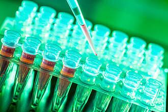 Deutscher Krebspreis:Ein Antikörper spürt kleinste Abweichungen bei Hirntumoren auf und erkennt zuverlässig eine IDH1-Mutation