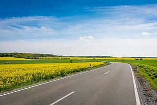 Landstraße schlängelt sich durch Felder mit gelb blühendem Raps.