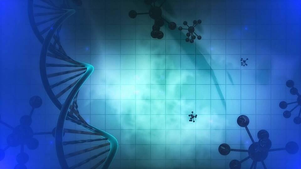 CAR-T-Zelltherapien sind teuer: Ärzte der Welt ficht nun das Patent von Novartis an