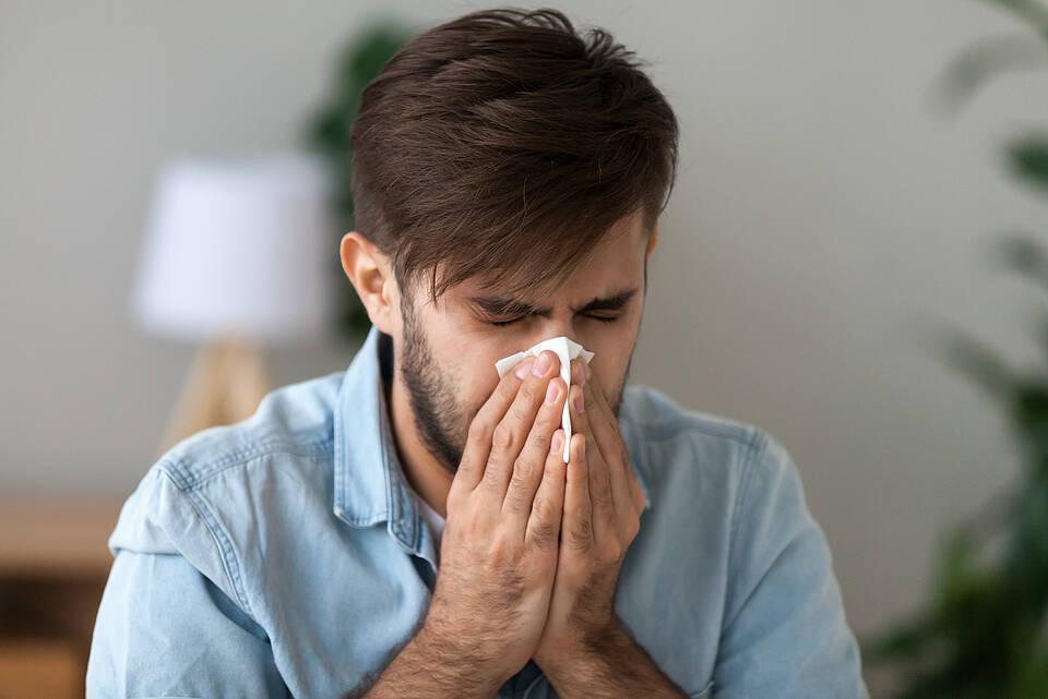 heuschnupfen, pollenallergie