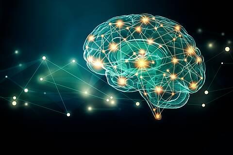 Gehirn - grafische Darstellung mit Sternenhimmel im Hintergrund.