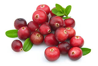 Cranberrys werden schon lange bei Blasenproblemen empfohlen
