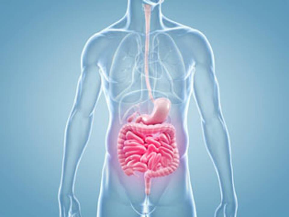 neues Medikament gegen Colitis ulcerosa
