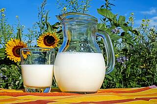 Milch, ungesund
