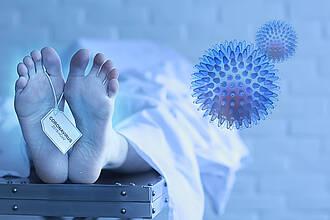 Coronavirus und Entzündungen im Gehirn gefunden: Obduktion zeigt, dass das SARS-COV-2 die Blut-Hirn-Schranke durchbrechen kann.