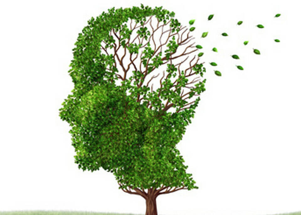 Mitochondrien als Schlüssel gegen Alzheimer?