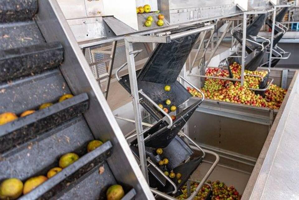 Eine vegane Fleischalternative nutzt Obst- und Gemüsereste. Durch bestimmte Gärungsprozesse entsteht natürliches Vitamin B12