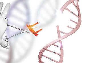 genschere, genom, genmanipulation, genforschung, gentechnik